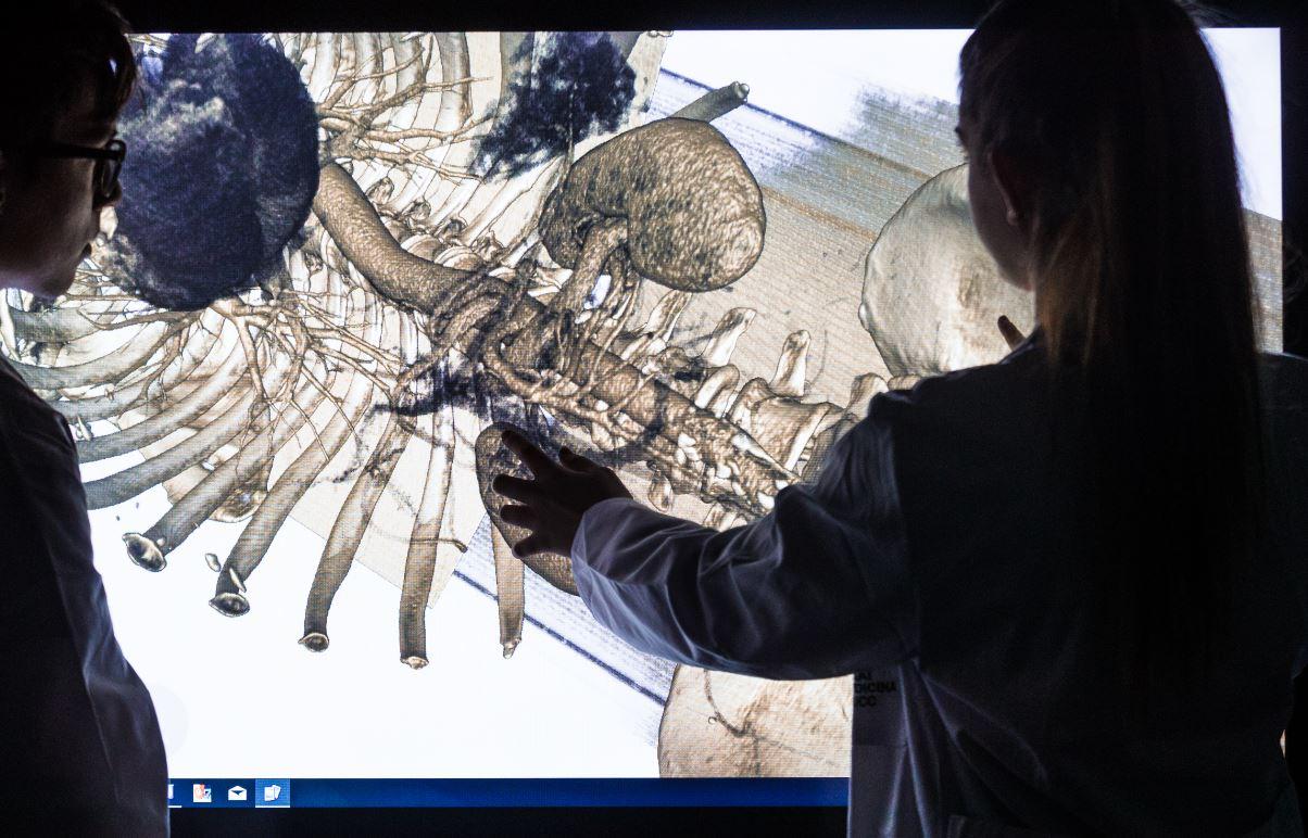 Dissecció virtual del cos humà