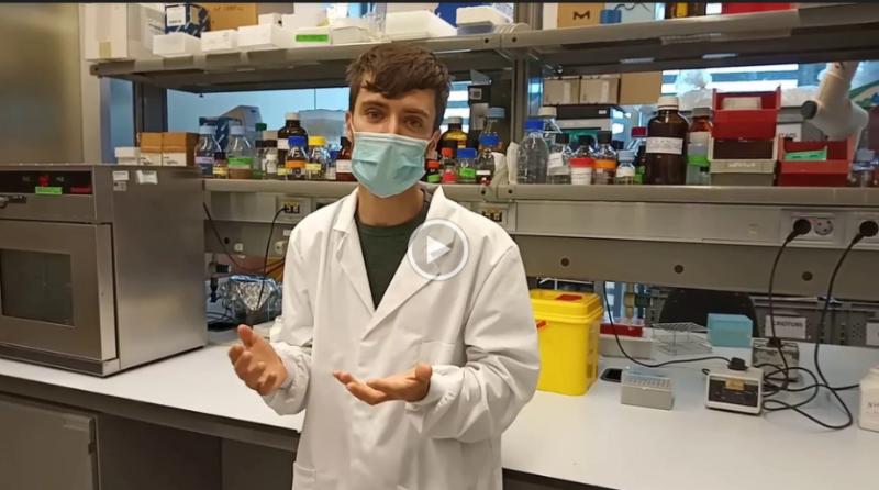 Visita virtual al Laboratori de Farmacologia  Integrada i Neurociència de Sistemes de l'IMIM