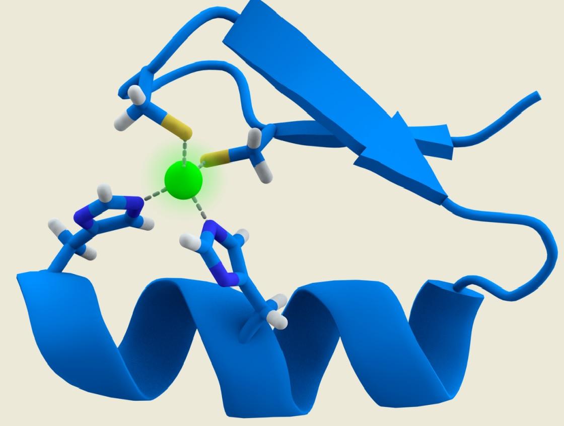Visita al PRBB: recerca en síntesi de pèptids
