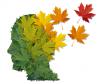 Genètica i malalties neurodegeneratives: l'exemple de l'Alzheimer.