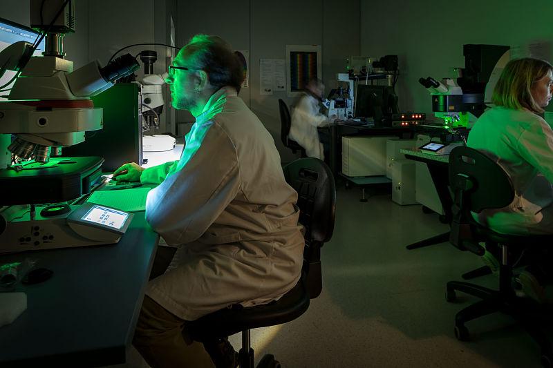 La biologia molecular i els microscopis de fluorescència en acció