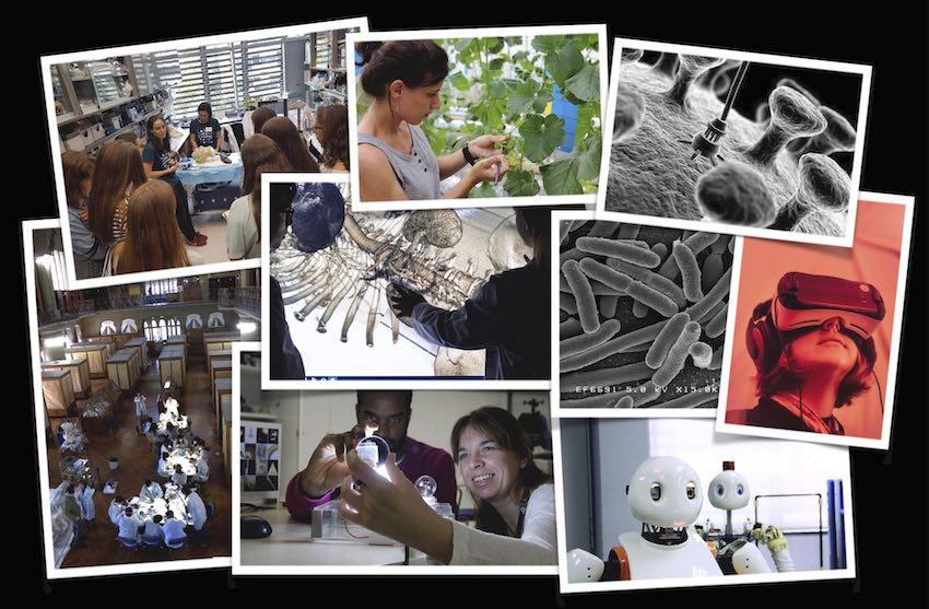Aprofita la setmana de la ciència per fer un taller de recerca amb els teus alumnes