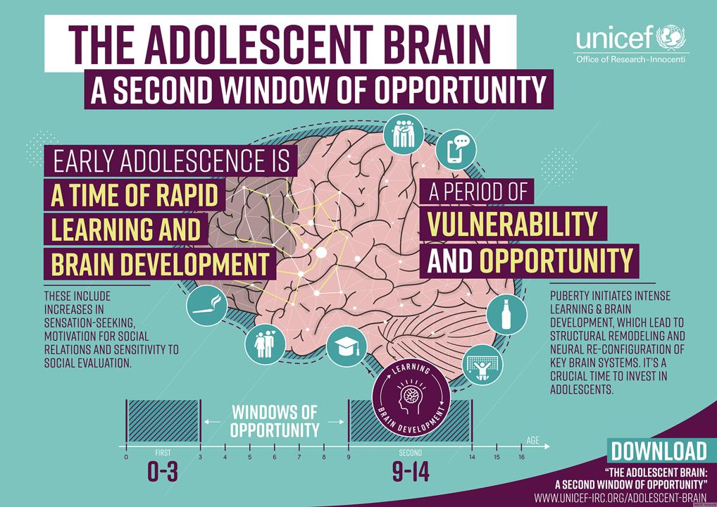 Setmana del cervell 2020: ¿Qué pasa en tu cerebro cuando eres adolescente?